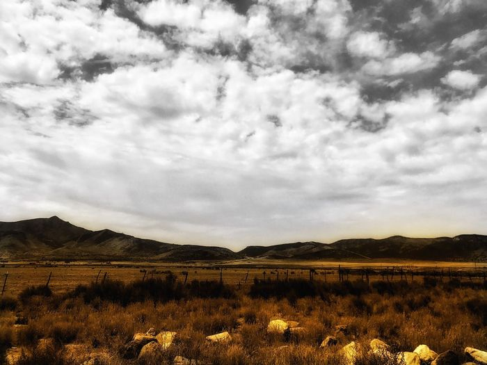 Nature Landscape Sky Beauty In Nature Field Mountain Grass Tranquility Cloud - Sky Scenics Tranquil Scene No People Plant Outdoors Growth Day Tree Selective Color