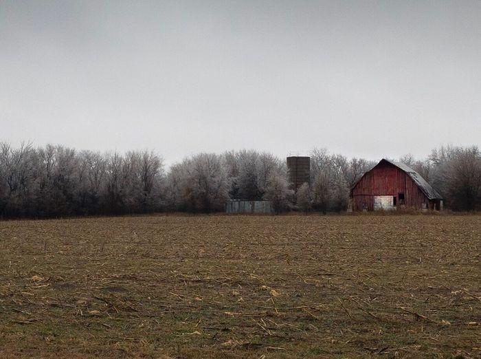 Old Farmstead