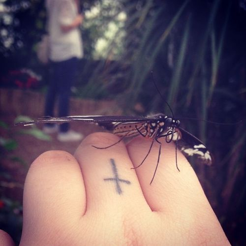 Butterfly Fingertattoo Crosstattoo