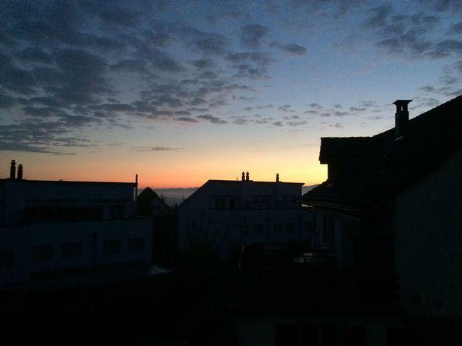 Early Mornig Sun Looks Realy Nice