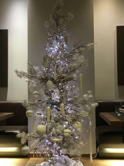 Alternative Christmastree