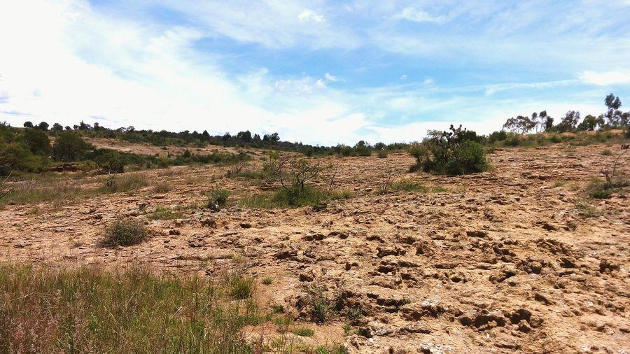 Mexico Tlaxcala Cmh Landscape Paisaje Tepetate