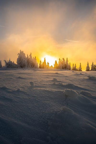 Beauty In Nature Cold Temperature Day Frozen Landscape Nature No People Outdoors Scenics Sky Snow Sunset Tranquil Scene Tranquility Tree Weather Winter