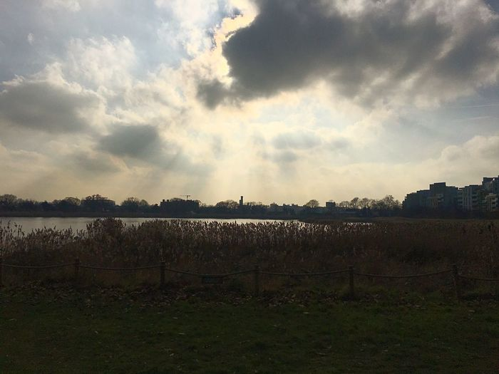 Woodberry wetland centre Sky Cloud - Sky Nature Tranquility Beauty In Nature Outdoors Urban Wetland Reservoir Woodberry The City Light