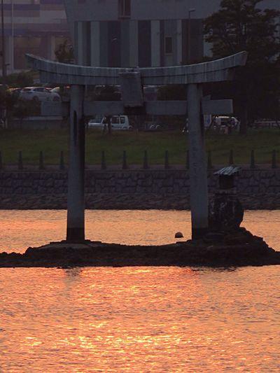 Enjoying The Sun Sunshine Relaxing TORII Toriii(: Torii Gate Torii Gates Sea Seascape Sunshine ☀