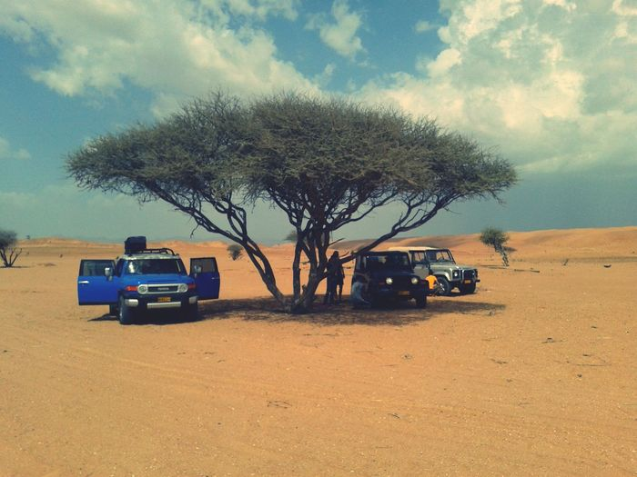 Enjoying Life Hot Summer Desert Life