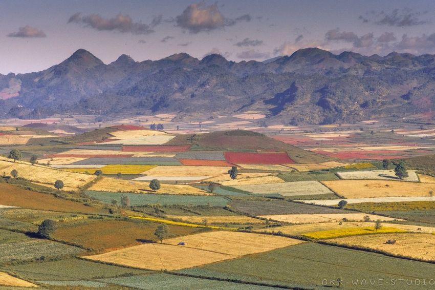 Field of the dream Travel Photography Bkkwavestudio Yangon, Myanmar Landscape_photography Landscape_photography