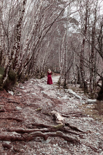 Fine Art Photograph of a woman in a forest Canonphotography Canon EOS 750D Loch Maree Scotland Fine Art Photography The Great Outdoors - 2018 EyeEm Awards The Creative - 2018 EyeEm Awards Scenics Nature Female Art Blonde Girl Sensual_woman Dress Tree Red Bare Tree