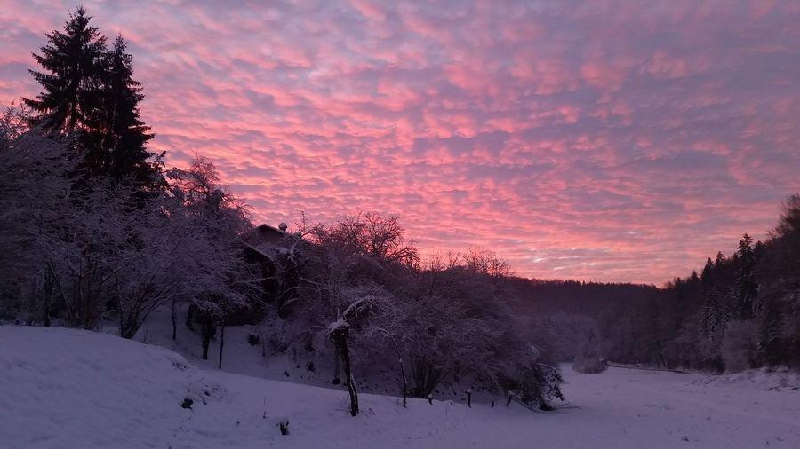 Slovenia First Eyeem Photo Life Is Beautiful Nature Fairytale  Pink Sky Winter Morning Snow