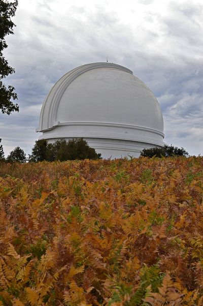 Palomar Observatory in a Field of Bracken Bracken Palomar Landscape Mountain Observatory