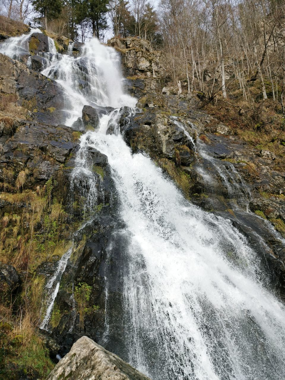 SCENIC VIEW OF WATERFALL