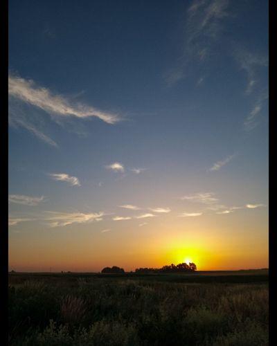 Dawn. Golden Hour Nature Photography Landscape_photography Dawn Smartphonephotography