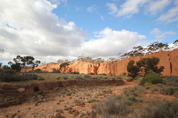 Landscape Cloud - Sky Nature Desert Scenics Outdoors Sky Day Beauty In Nature Tree Arid Climate Plant No People Mountain South Australia Redbanks Conservation Park Red Earth County