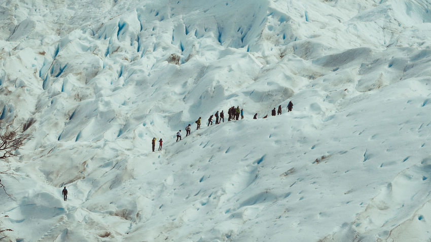 Argentina Climbing Cold Temperature El Calafate Exploring Glacial Glacier Hike Glaciers High Angle View Landscape Large Group Of People Los Glaciares National Park Mini Trekking Nature Panorama View Panoramic Perito Moreno Glacier Quiet Place  Santa Cruz Togetherness Tour Treaking Trip Winter World Heritage Site By UNESCO