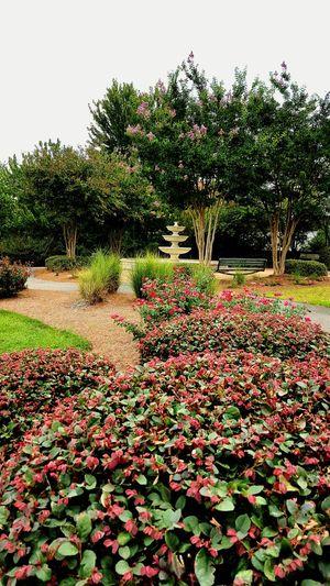 Exploring Sympathy Park Soakingupthesummer Beautiful Places Fountain