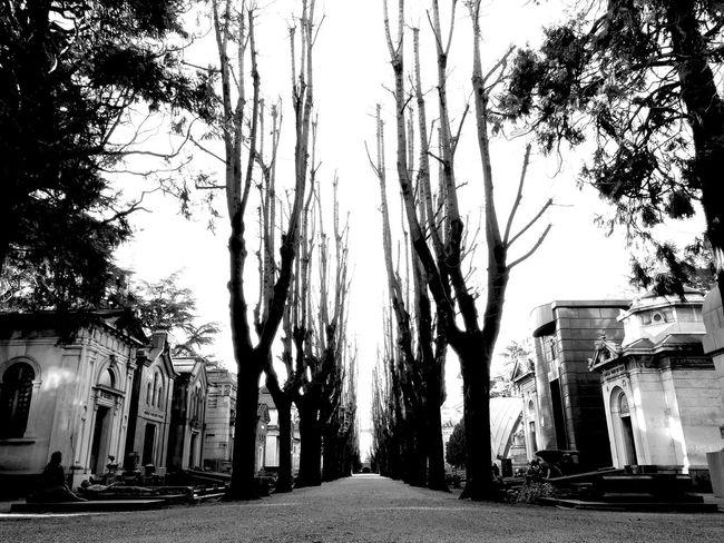 Cimtero. Cemetery Graveyard EyeEm Best Shots - Black + White Black And White Black & White Blackandwhite Perspectives Milan