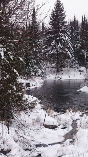 ...the waters... Waterscape River View No Edit/no Filter Northern Ontario No Filters  The Purist (no Edit, No Filter) Winterscapes Winter Wonderland Rainy Winter Day Little Town In The Middle Of NowhereFreezing Cold Waters The Waters Eyeemphotography EyeEmBestPics Beautiful World