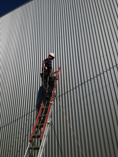 Low angle view of male worker on ladder by building