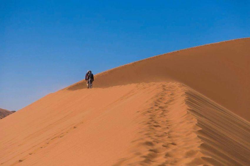 "Walking on the ""Dune 45""... Sand Dune Sand Desert Landscape Adventure Wildlife Africa Namibia Liveforadventure Waphaphotographer Phototraveller Nationalgeographic EyeEmNewHere Globetrotter Travel Destinations Wonderful Wanderlust Lonelyplanet Travel Photography Travel Livefortravel Viaggiare Eyemphotography Nature Outdoors"