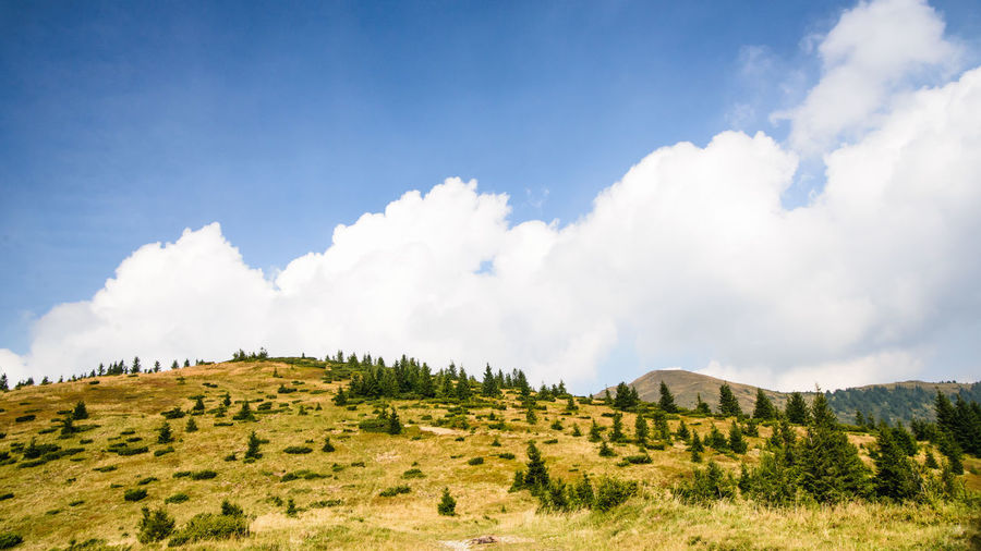 Cloud - Sky Sky Tranquil Scene Scenics - Nature Tranquility Beauty In Nature Plant Mountain Environment Landscape Day Non-urban Scene Nature No People Land Tree Green Color Growth Grass Idyllic Outdoors Mountain Peak Range
