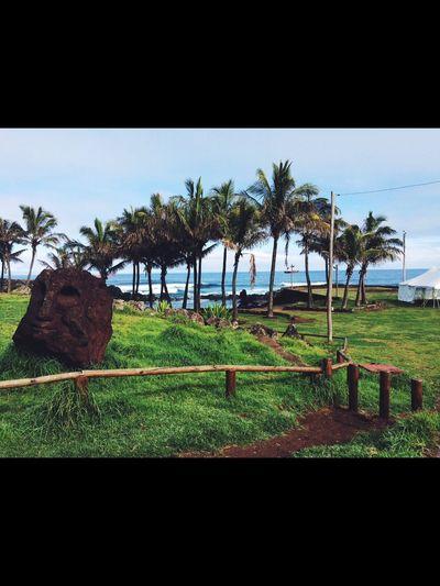 🗿🗿🗿🗿🗿🗿🗿 Easter Island Isla De Pascua Beach