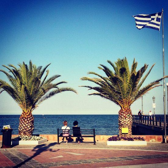 Greece Palm Trees People Tourists