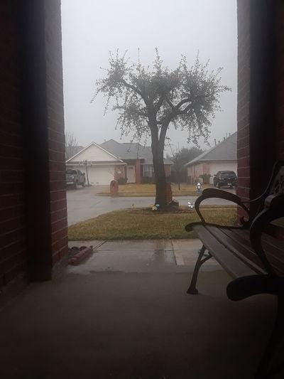Rainy days 🌧 Water Wet No People Tree Day Indoors  Sky EyeEmNewHere