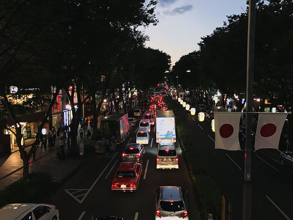 Omotesando, Tokyo Transportation Car Illuminated Mode Of Transport Tree Night Traffic Road Land Vehicle Outdoors No People Japan Cultures Japan Photography Photography 日本 일본 도쿄 東京 Love Tokyo City Life Evening Busy Omotesando