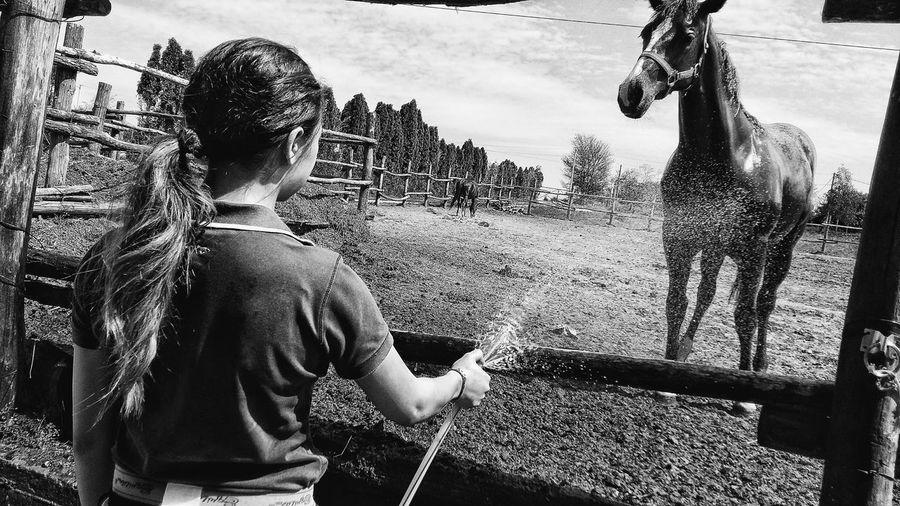 Equestrian Equestrianphotography First Eyeem Photo