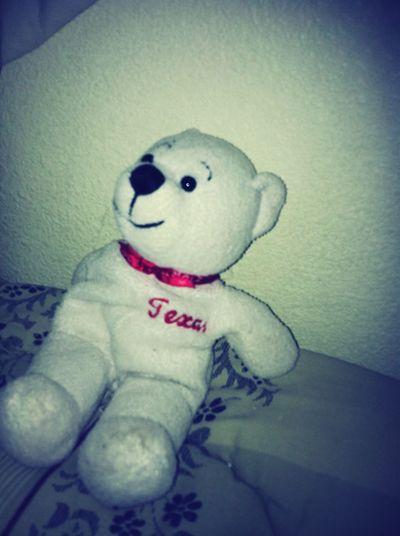 My Beary <3