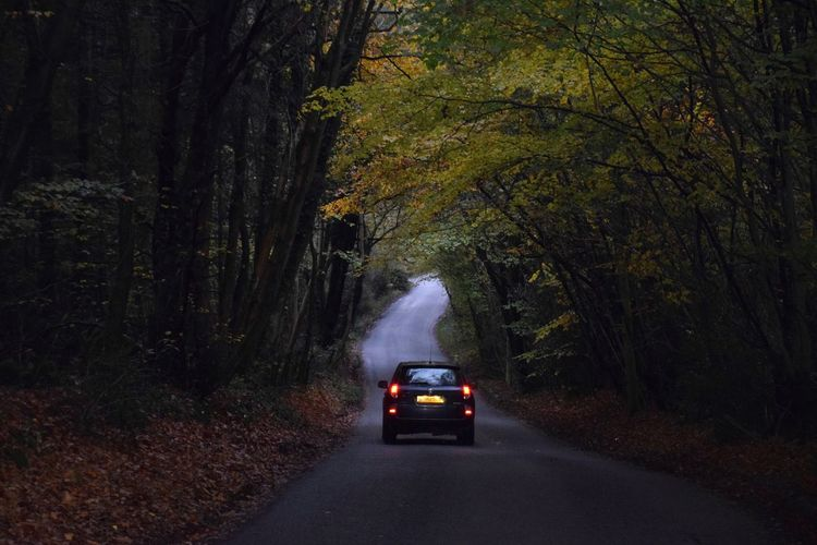 Car Tree Transportation Change Land Vehicle Forest The Way Forward Road No People Adventure Nature Outdoors Day Wiltshire Countryside Autumn Autumn Colours Drive Home