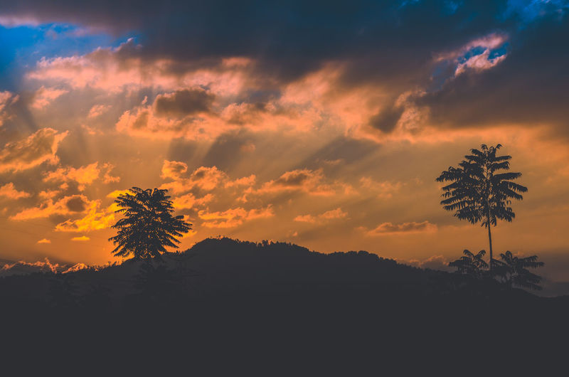 Cikalong's Sunset Sky Sunset Cloud - Sky Beauty In Nature Tranquility Silhouette Tranquil Scene Orange Color Plant Scenics - Nature Tree Nature No People Idyllic Outdoors Growth Non-urban Scene Environment Dramatic Sky Landscape Romantic Sky