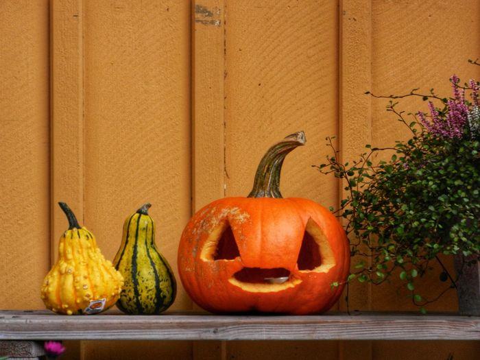 Close-up of pumpkin against orange wall