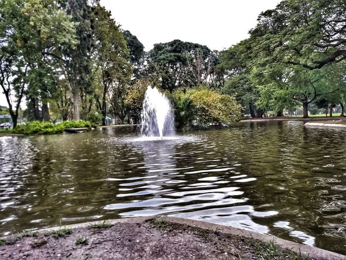 Saavedra's Park Tree Water Spraying Flood Motion Pixelated Sky Fountain Rainy Season First Eyeem Photo Adventures In The City