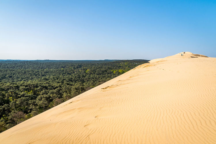 Scenics - Nature Sky Beauty In Nature Land Landscape Clear Sky Tranquil Scene Tranquility Sand Copy Space Nature Environment Day Non-urban Scene Desert Idyllic No People Blue Sand Dune Climate Arid Climate Outdoors