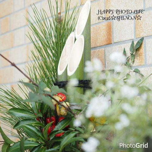 お正月 門松 実家 Olympus Olympusomd Olympus OM-D EM-1 Olympus倶楽部 Om_d E_M1 ファインダー越しの私の世界 写真を撮ってる人と繋がりたい 写真好きな人と繋がりたい Kadomatsu