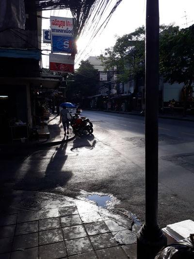 Sunlight Day