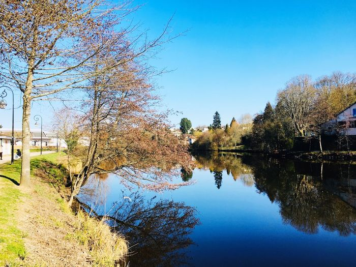 By the river Light And Shadow Water Nature Brown Green Trees France Vienne River Reflection Sunny Day Winter Walk Water Tree Plant Sky Reflection Nature Day Tranquility No People Beauty In Nature Clear Sky Outdoors Growth Blue