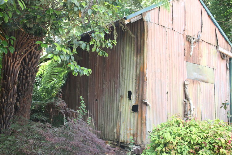 Old Buildings Old House Noojee Rustic Beauty Rustographer Rustic_wonders Mother Nature Summer Day Outdoors