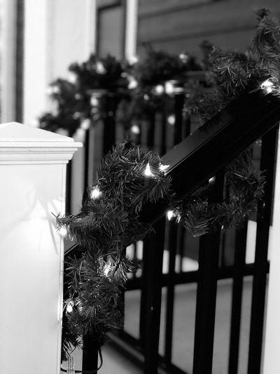 Porch Christmas