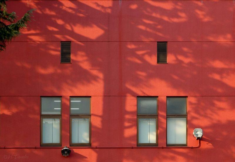 Wall Simplicity Minimalism Smart Simplicity Urban Nature Light And Shadow Orange By Motorola