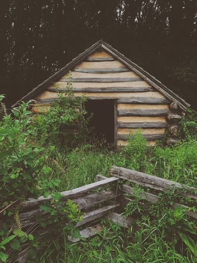 Revolutionary War Cabin. Growth Built Structure No People Plant Architecture Tree Wood - Material Abandoned Outdoors Nature Day Cabin Hut Home History Historic Historical Building Forest Wood Overgrown Old Tree Pennsylvania