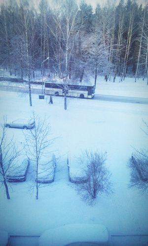 Winter Snow Happy
