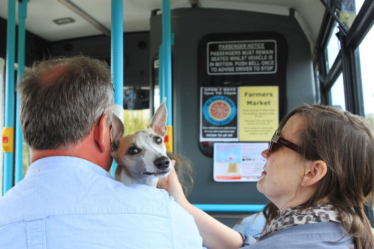 a close up of a dog, a man and a woman in a public bus Up Close Street Photography Animal Bus Casual Clothing Close Up Dog Fear Fun Funny Moments Funny Picture Headshot Hund Looking Man Portrait Portrait Of A Woman Public Transport Public Transportation Sitting Street Photography View Woman The Street Photographer - 2019 EyeEm Awards