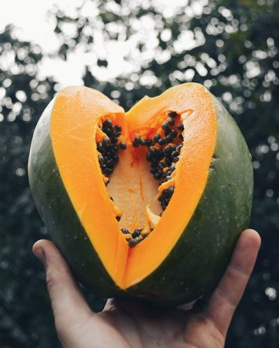 Fruit Food And Drink Textures And Surfaces Healthy Eating Freshness Papaya PawPaw Heart Heart Shape Tropical Tropical Fruits Rethink Things