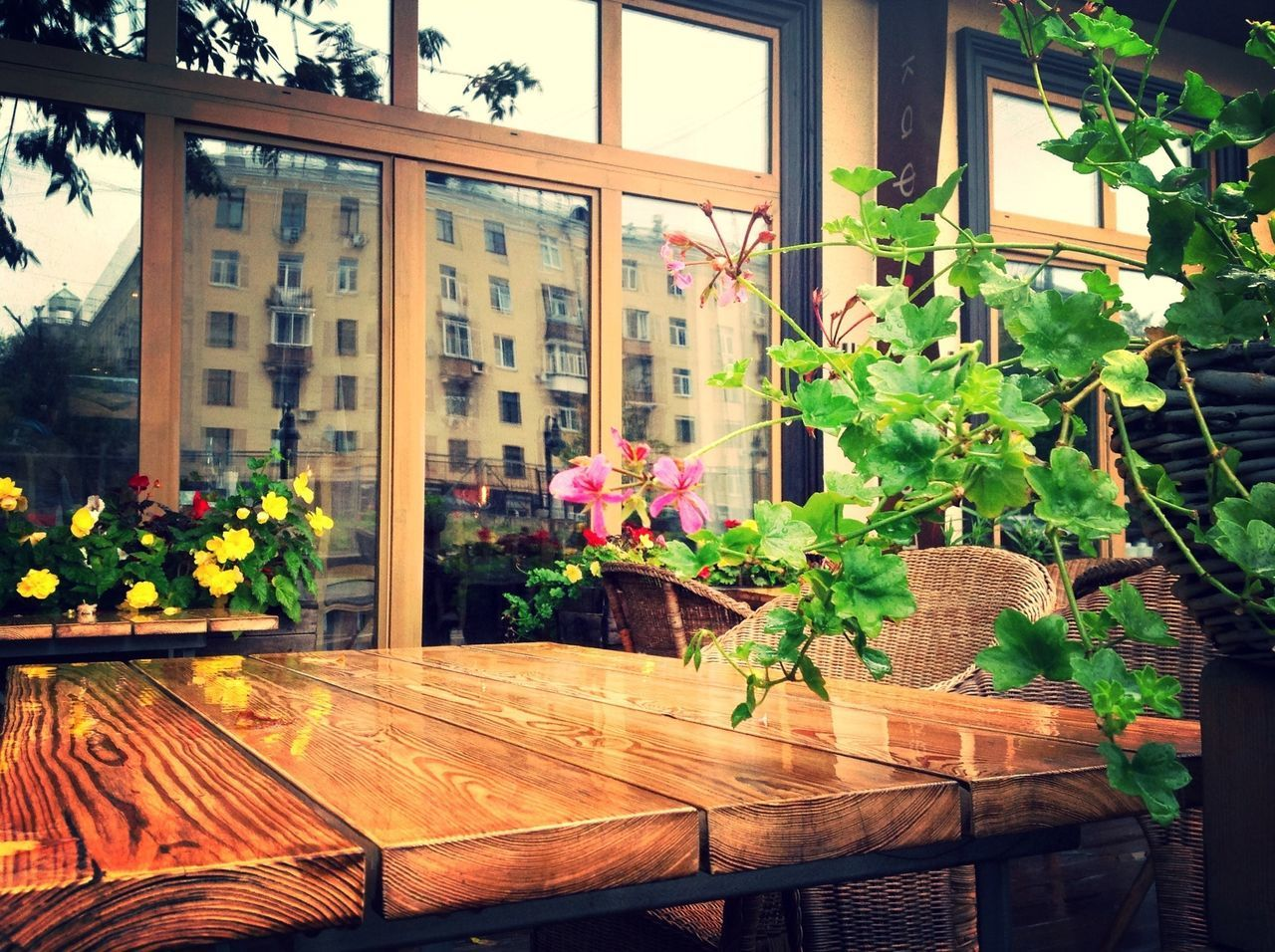 Wooden Table And Chair With Potted Plants In Restaurant