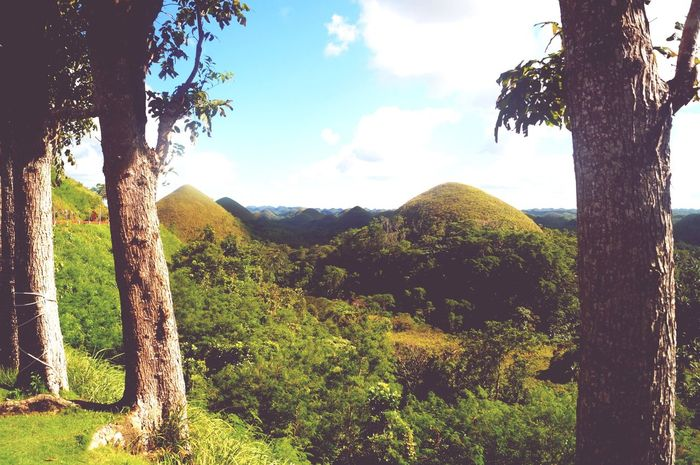 Eyeem Philippines Philippines Bohol Chocolatehills Travel