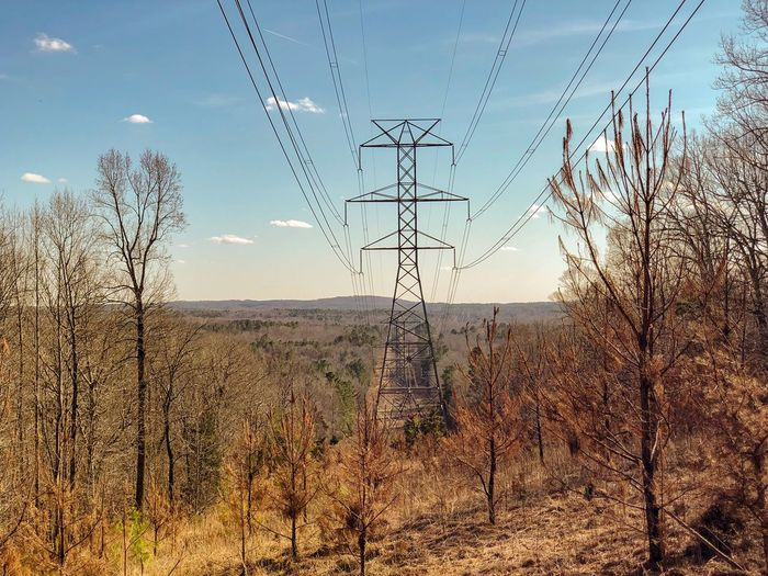 A hot winter day in north Carolina Sky Nature Plant No People Tranquility Beauty In Nature Day Tranquil Scene Outdoors Cable Cloud - Sky Electricity Pylon Land Environment Technology Power Supply Electricity  Landscape Scenics - Nature Connection