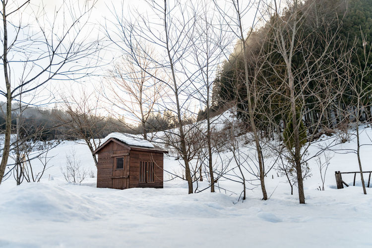 Cold Temperature Snow Winter Tree Architecture Building Exterior Built Structure Building Bare Tree Nature House Land No People Plant Beauty In Nature Environment Day Field Frozen Outdoors Cabin Cottage Snowing Extreme Weather