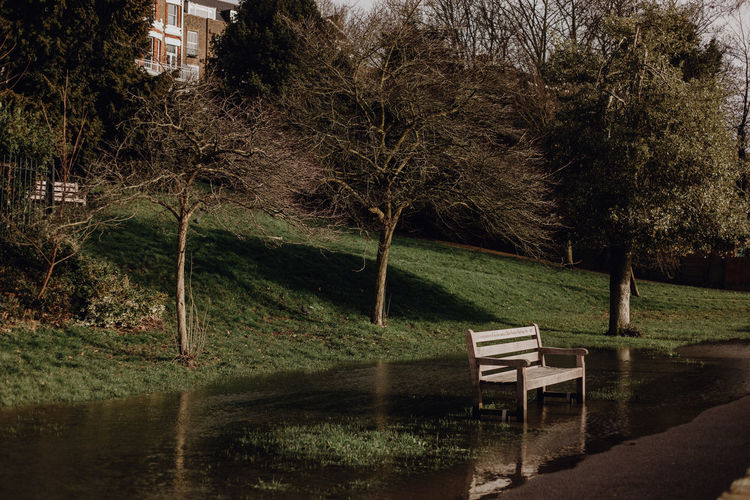 Bench in park by lake